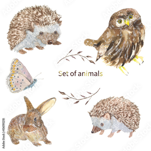 Set Of Animals Owl Hedgehog Butterfly Bunny Set Of