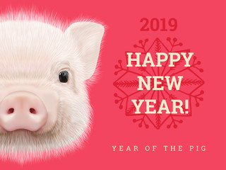 Search photos by ant art19 Happy New Year 2019 year of the pig paper card  Chinese years symbol  Zodiac