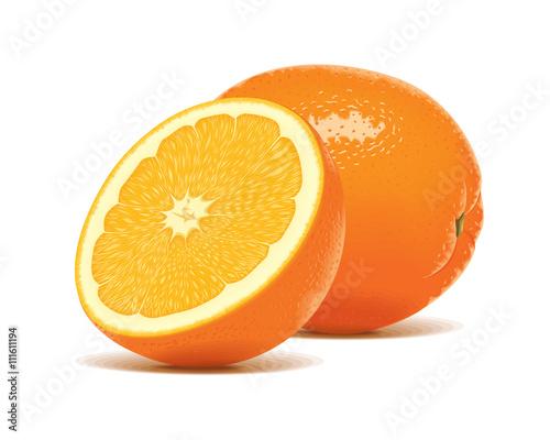 """Slice Half Realistic Orange Fruit Citrus Vector"" Stock"
