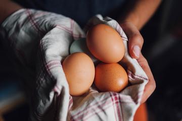 Fresh eggs in a tea towel