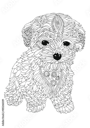 Bichon Frise Puppy Hand Drawn Dog Sketch For Anti