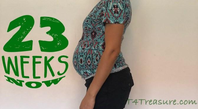 TB3: Week 23