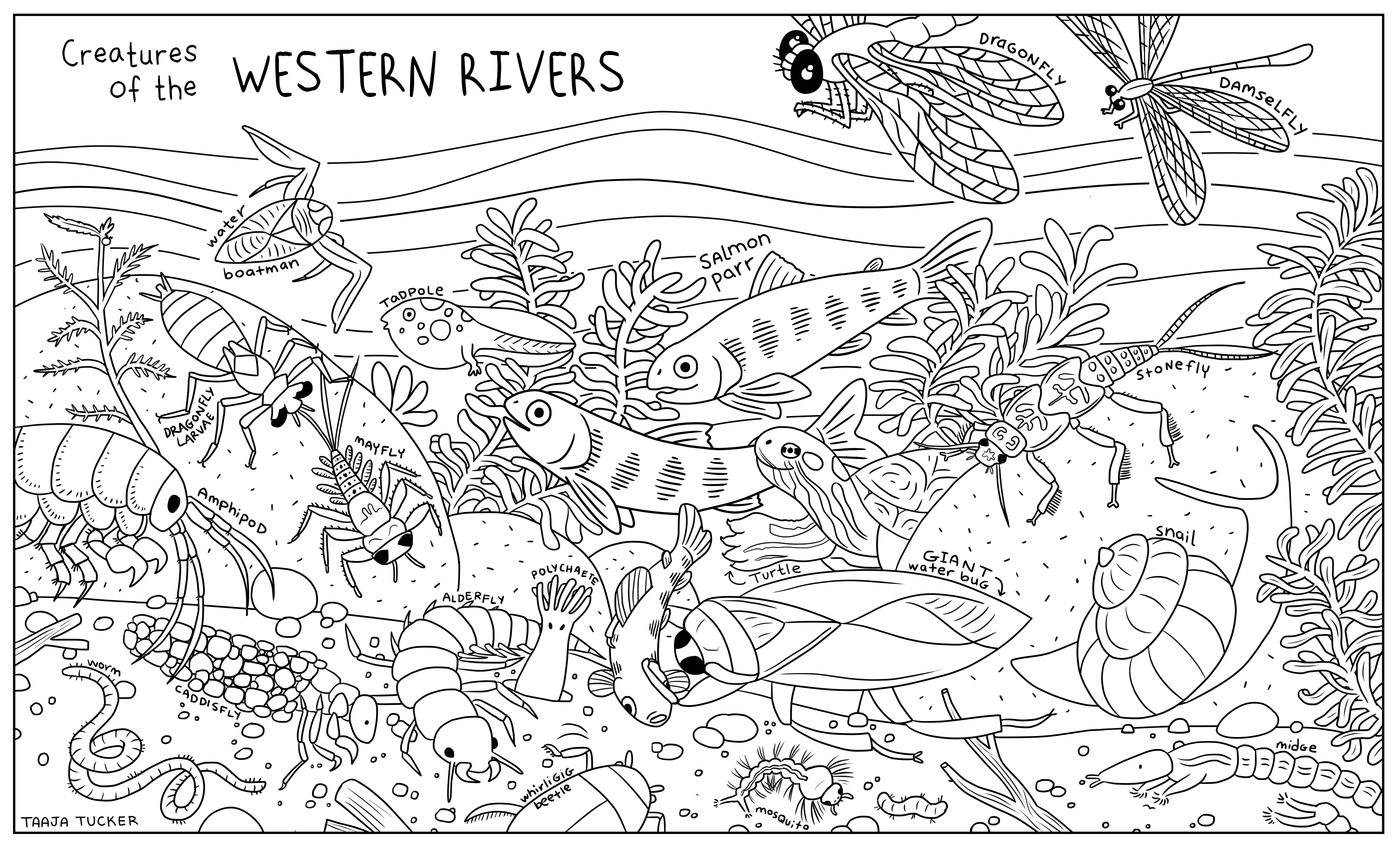 Great Lakes Coloring Pages