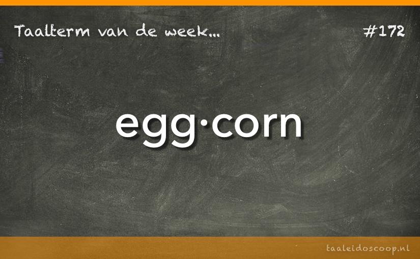 Taalterm van de week: Eggcorn