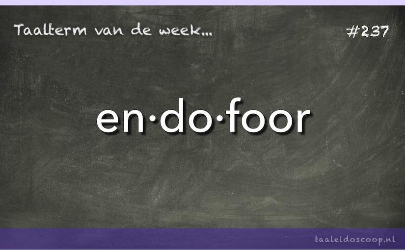 Taalterm van de week: endofoor