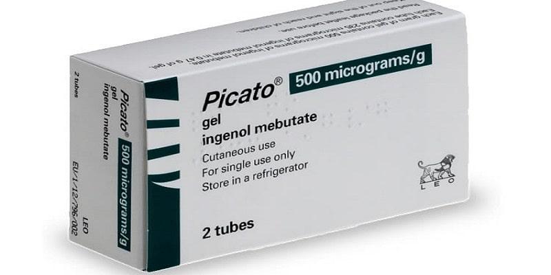 جل بيكاتو Picato طريقة الاستخدام والآثار الجانبية