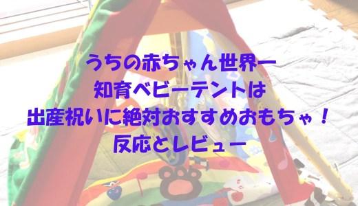 うちの赤ちゃん世界一 知育ベビーテントは出産祝いに絶対おすすめおもちゃ!反応とレビュー