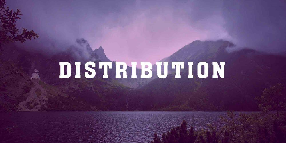 Web_Servicio_Distribución2