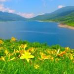 野反湖富士見峠