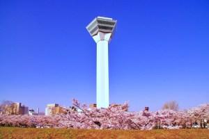 五稜郭タワー
