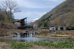 ミニ尾瀬公園