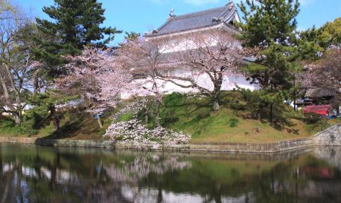 亀城公園(土浦城跡)