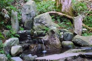 八溝五水・金性水(八溝川湧水群)