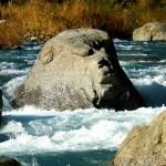 道志川・猿岩(猿顔石)