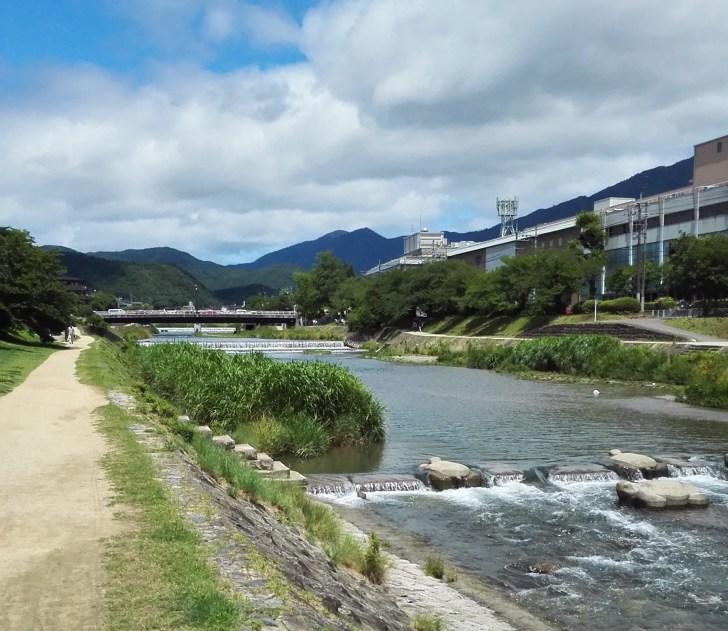 高野川の飛び石