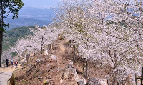 吉野山・奥千本