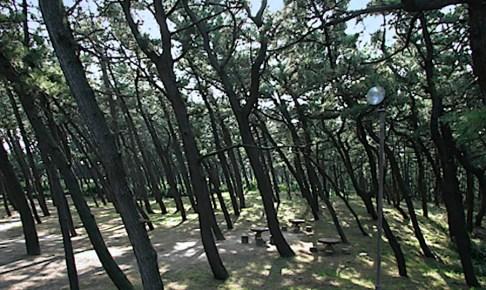 西海岸公園