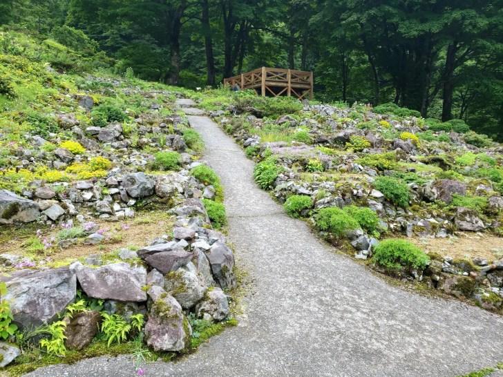 湯沢高原パノラマパーク