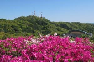 稲佐山公園