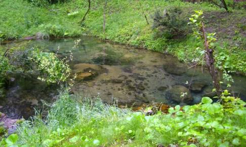 塩釜の冷泉