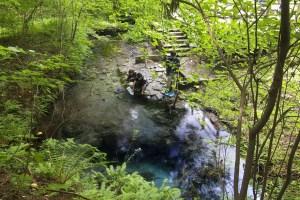 男池湧水群