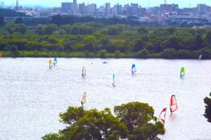 彩湖(荒川調節池)