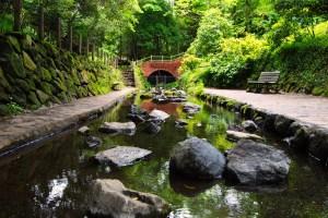 柿田川湧水群(柿田川公園)