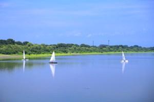 谷中湖(渡良瀬遊水地)