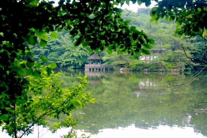 石神井公園・三宝寺池