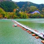 麦山の浮橋(ドラム缶橋)