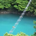 猿専用吊り橋
