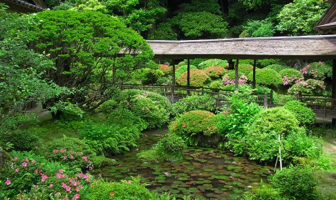 光久寺の茶庭