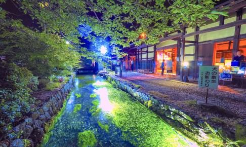 梅花藻ライトアップ