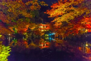 醍醐寺『秋の夜間特別拝観』