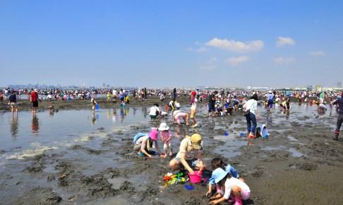 ふなばし三番瀬海浜公園『潮干狩り』