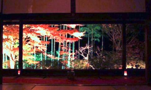 宝泉院『秋の夜灯り』