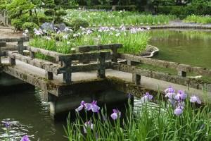 伊佐須美神社『あやめ祭』