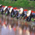 香取神宮『御田植祭』