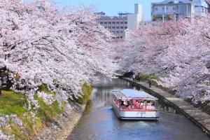 松川遊覧船『松川スプリングクルーズ』
