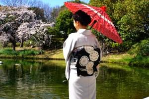 白鳥庭園観桜会 花見茶会