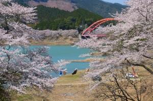shichikawa
