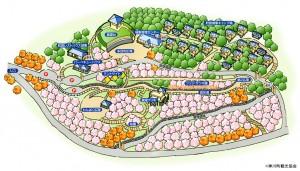 公園MAP