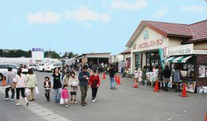 益子観光いちご団地