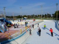 姉ヶ崎公園アイススケート場