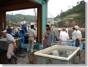三津漁業生産組合