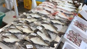 坂町漁協新鮮朝市