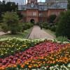 色とりどりのお花がいっぱいの赤レンガ庁舎