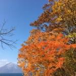 紅葉の支笏湖が綺麗