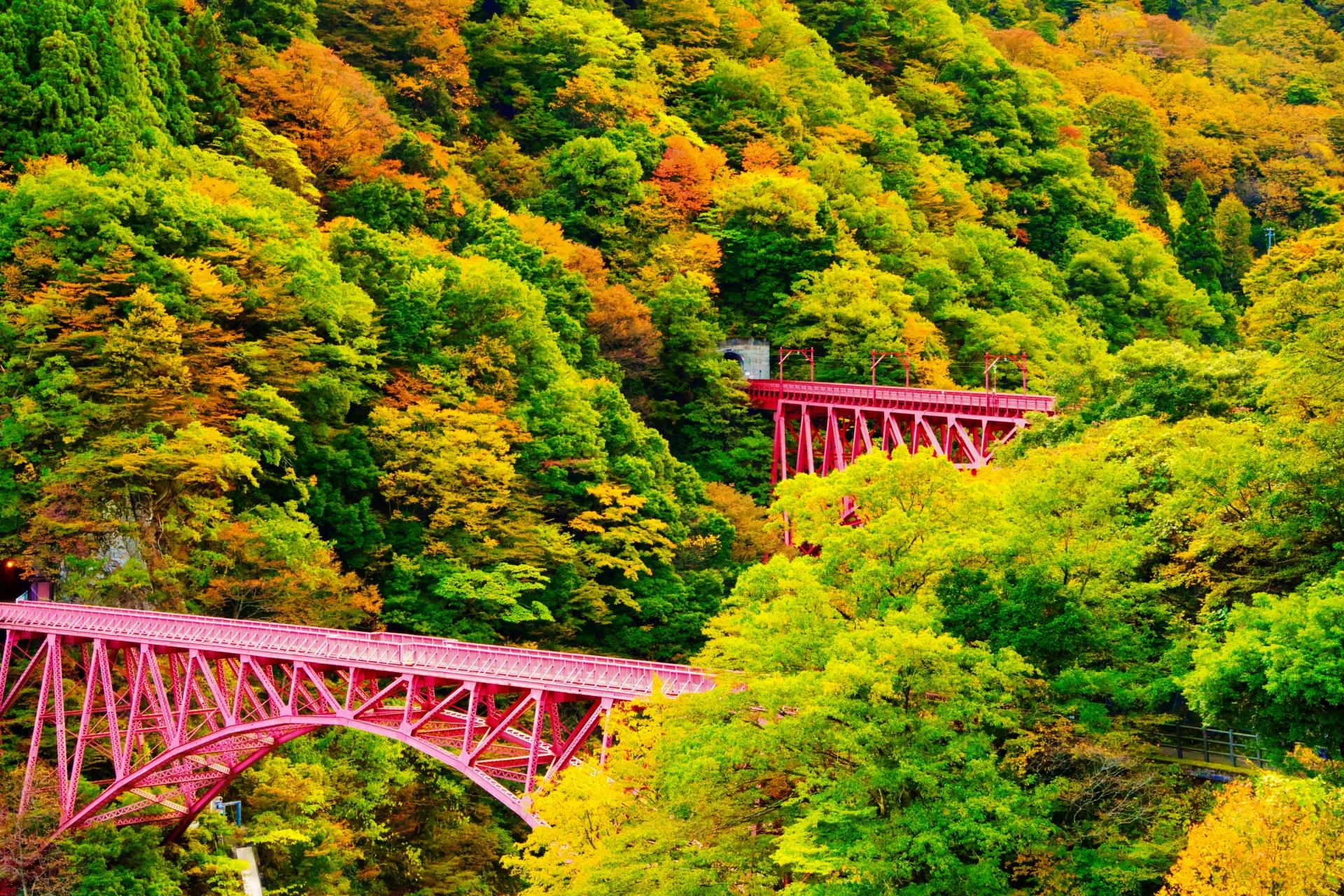 黒部渓谷トロッコ電車 山彦橋