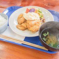 「ジュンブレンドキッチン」高岡の農家レストラン 驚くほど柔らかくてジューシーな「チキン南蛮」